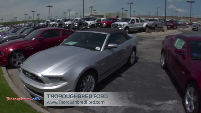 Thoroughbred Ford New Ford Dealership In Kansas City Mo 64154